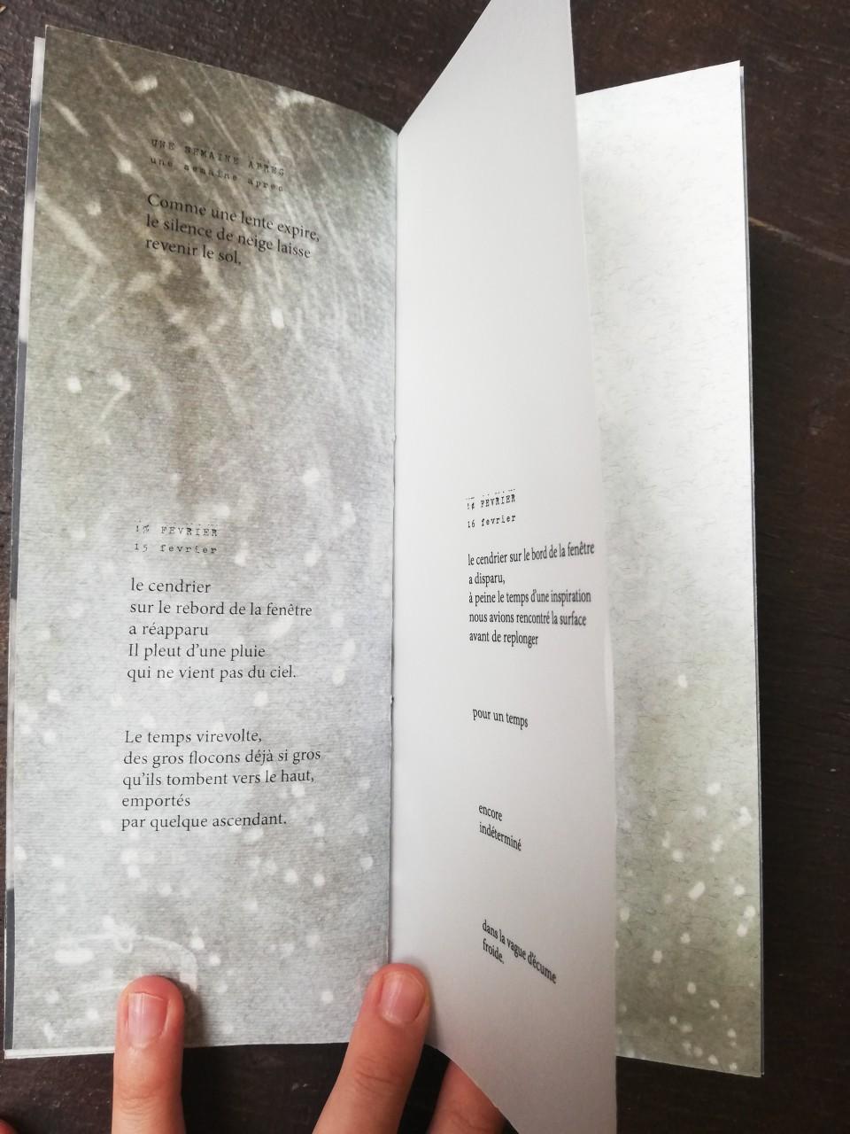 Journal de neige / 2018